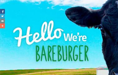 Best Organic Burgers Restaurant NJ, order delicious burgers online